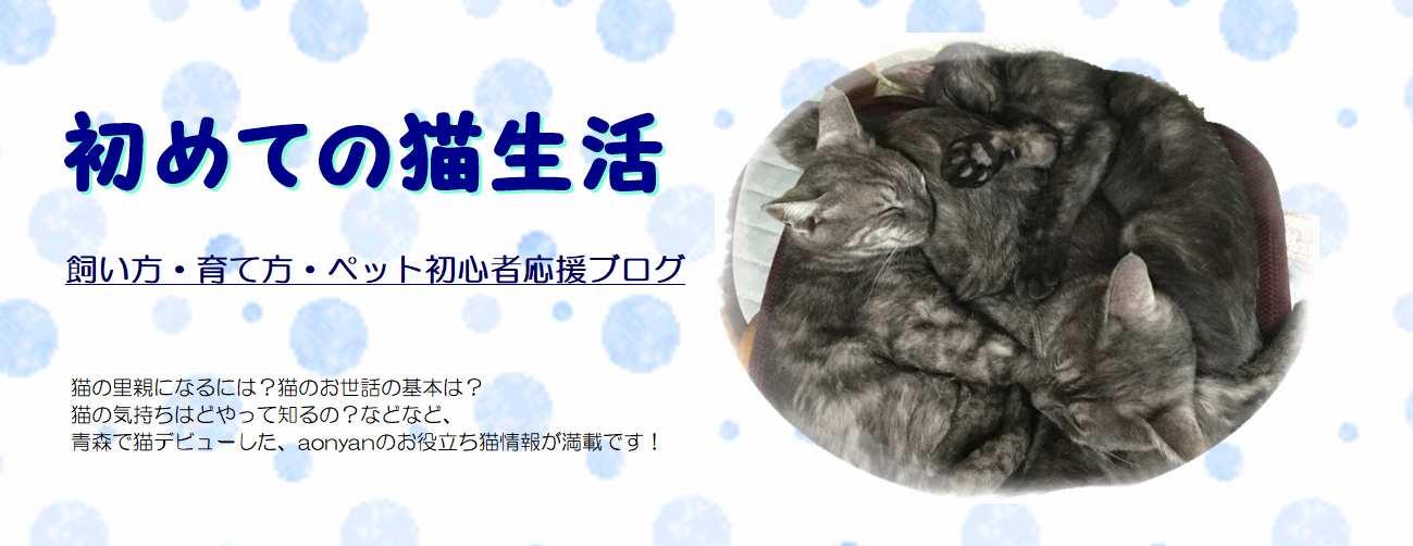 初めての猫生活!飼い方・育て方・ペット初心者応援ブログ
